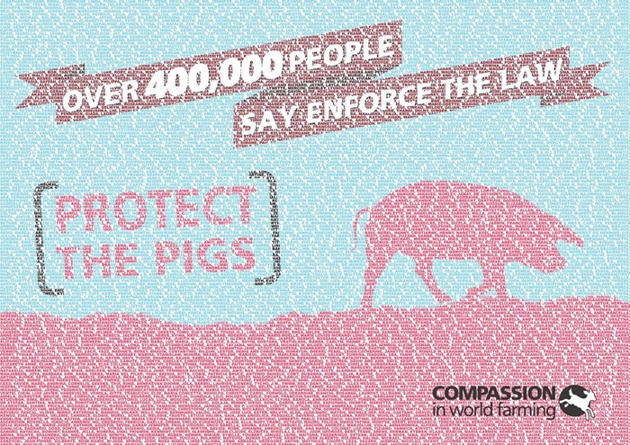 Over 400,000 people say enforce the law - protect the pigs
