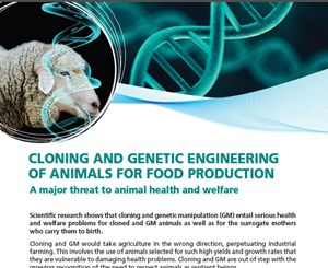 Cloning and Genetic Engineering of Animals for Food Production