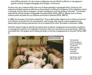 Lack of compliance with the Pigs Directive continues: Urgent need for change