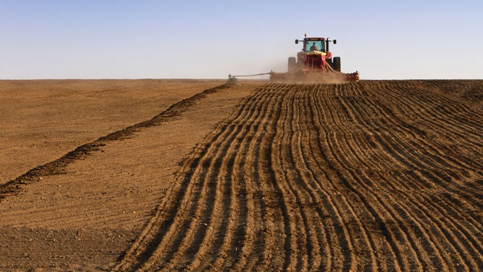 Crops being harvested.