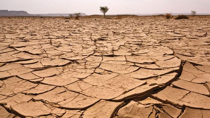 """Результат пошуку зображень за запитом """"factory farming and climate change"""""""