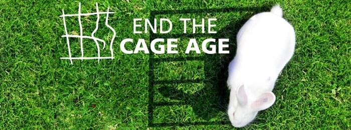 Endthecageage Cover