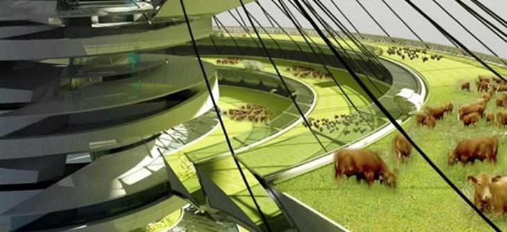 Verticality The Future Of Farming Compassion In World Farming