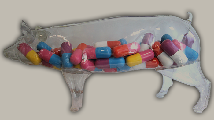 Factory farming's dangerous drug habit