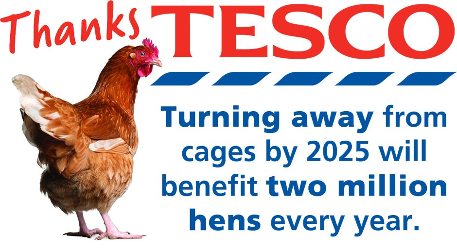 Tesco turns its back on cages