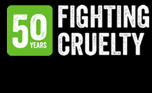 50 Years Fighting Cruelty